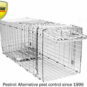 Premium Possum Trap Pest Patrol  Large.  Kind Cats dogs foxes possum cage